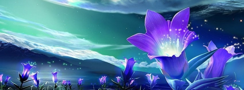 abstract purple flowers facebook cover
