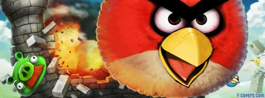 angry birds challange facebook cover