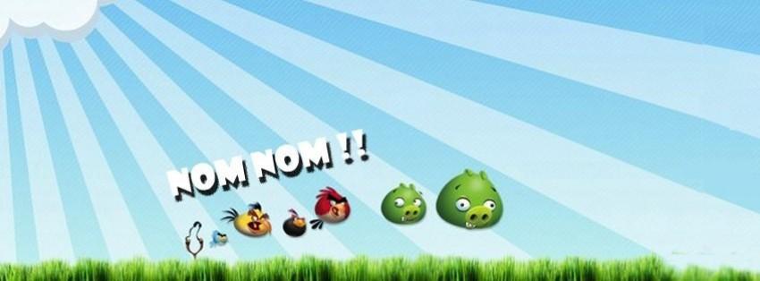 angry birds nom nom facebook cover
