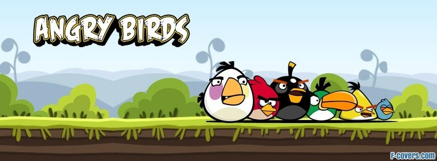 angry birds one facebook cover