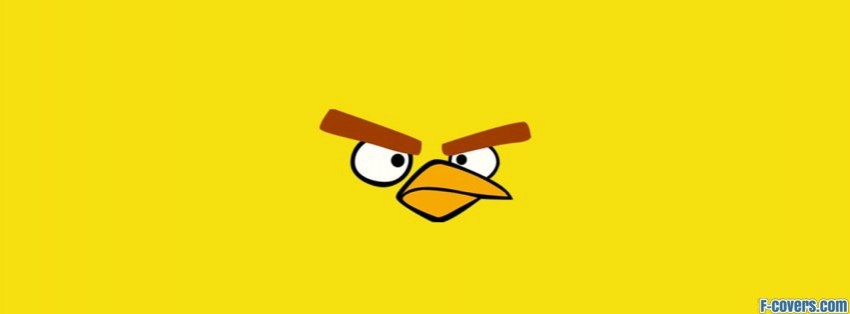angry birds yellow facebook cover