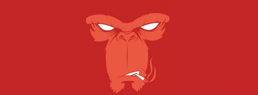 angry smoking monkey facebook cover