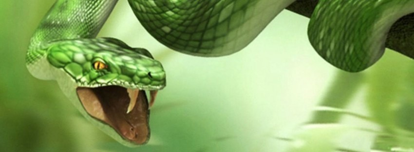 angry snake facebook cover