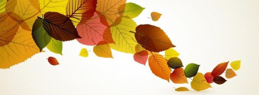 Картинки осени для обложки на фейсбук
