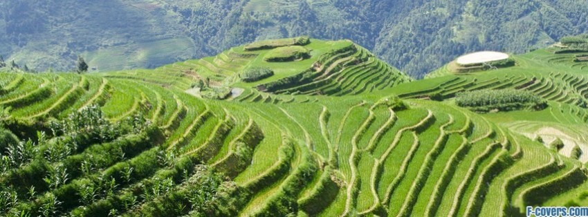 banaue rice terraces philippines facebook cover timeline