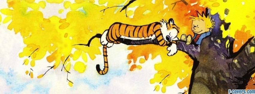 calvin and hobbes facebook cover