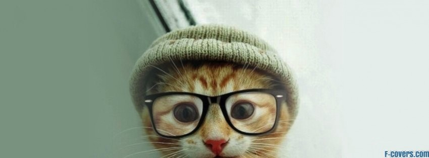 cat hat glasses facebook cover