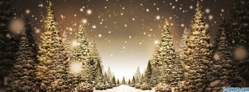 christmas tree line facebook covers
