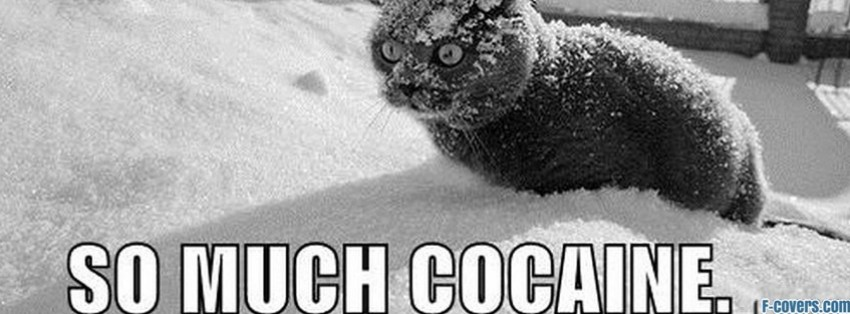 cocaine facebook cover