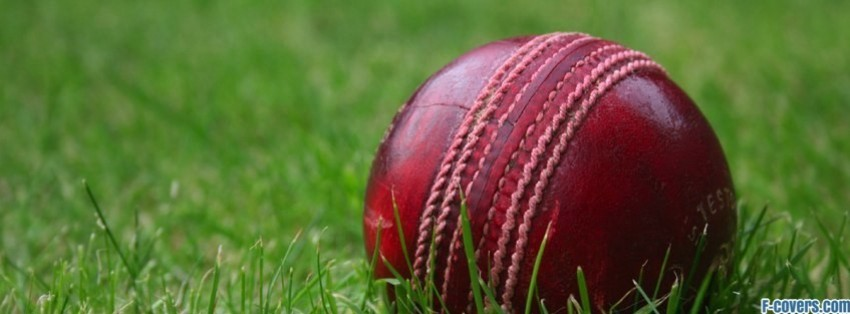 cricket ball facebook cover