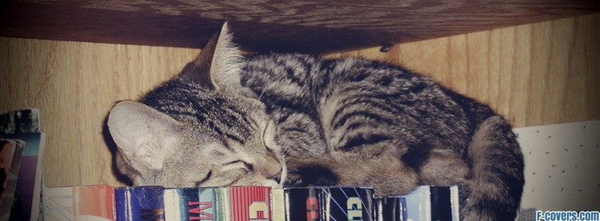 Cute Kitten Sleeping On Books Facebook Cover Timeline