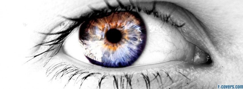 fire fox eye facebook cover