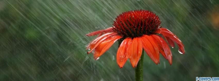rain fb cover photo  Facebook Cover Photos
