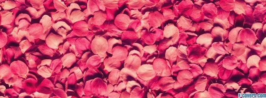 flowers pink petals roses Facebook Cover timeline photo banner for fb