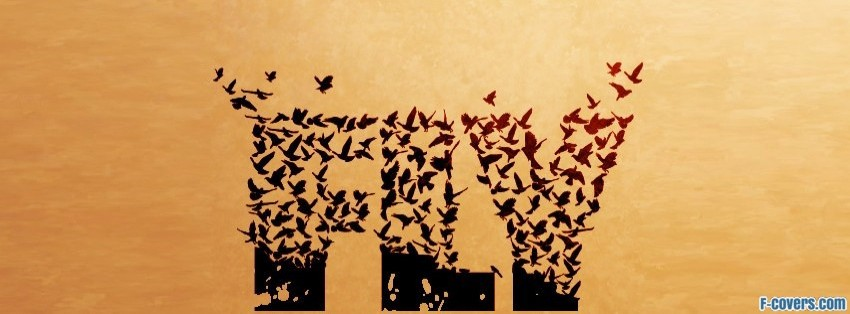 fly typeart facebook cover