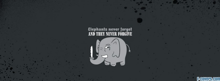 funny elephant 2 facebook cover timeline photo banner for fb