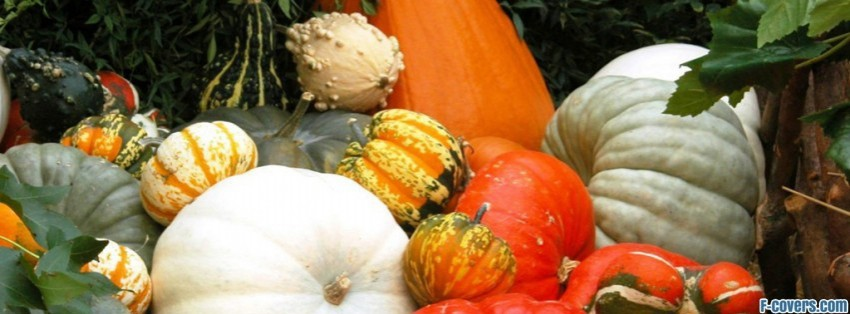 halloween pumpkin festival facebook cover