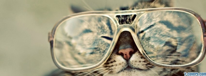 hipster cat with glasses facebook cover