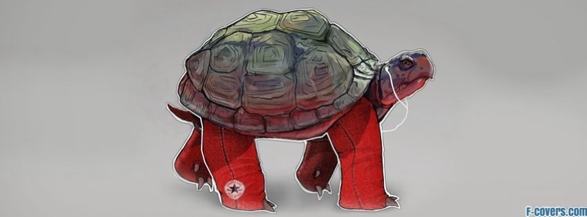 hipster turtle with headphones facebook cover