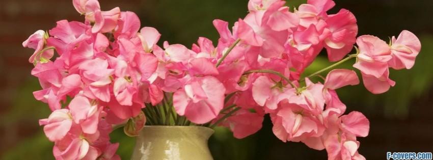 Decorating Summer Flowers Facebook Cover Timeline Photo