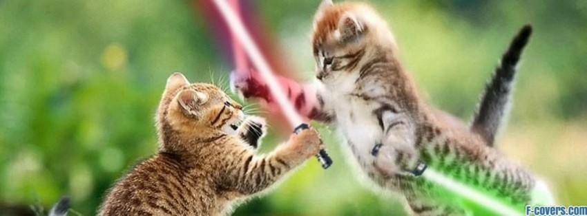 jedi cats facebook cover