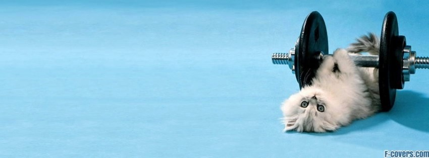 kitty lifting weight facebook cover