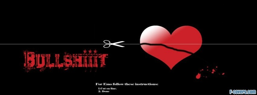 love is bull facebook cover