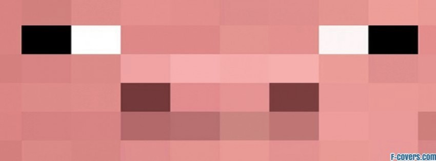 Minecraft Pig Face games Facebook Covers