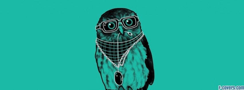 minimalistic hipster owl facebook cover