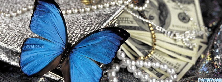 money butterfly facebook cover