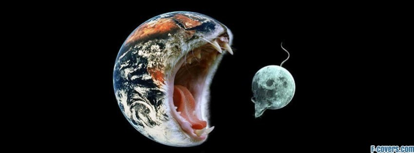 Facebook Cover Photos Earth Earth Cat Facebook Cover