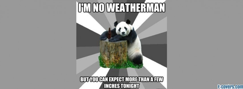 funny panda facebook timeline - photo #27