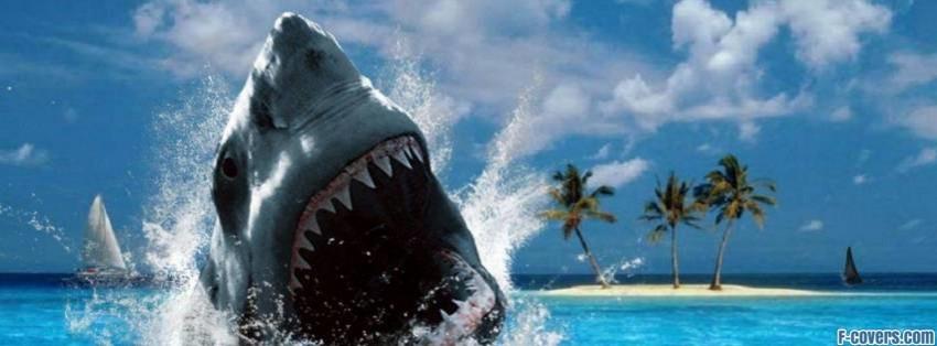 Shark Attack Facebook Cover Timeline Photo Banner For Fb