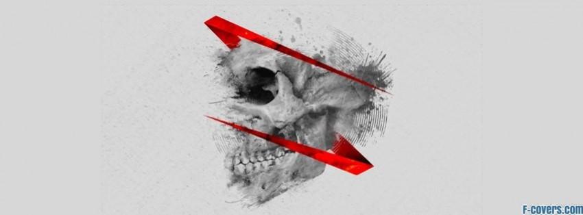 skull dubstep facebook cover