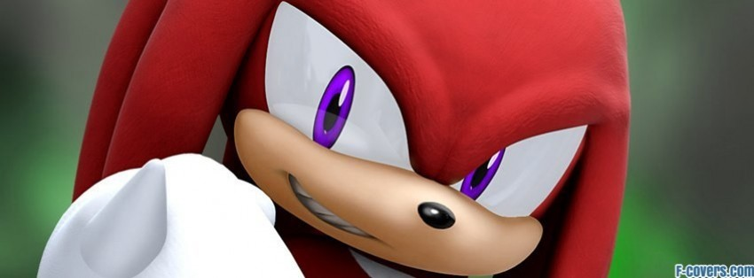 Sonic The Hedgehog Knuckles The Echidna Facebook Cover Timeline Photo Banner For Fb