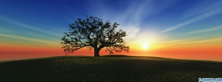 sun set tree facebook cover