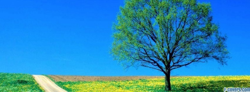 tree flower field facebook cover