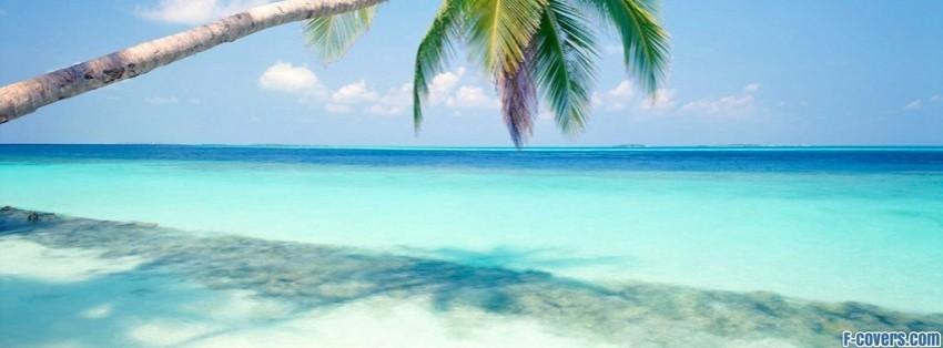 Tropical Island Facebook