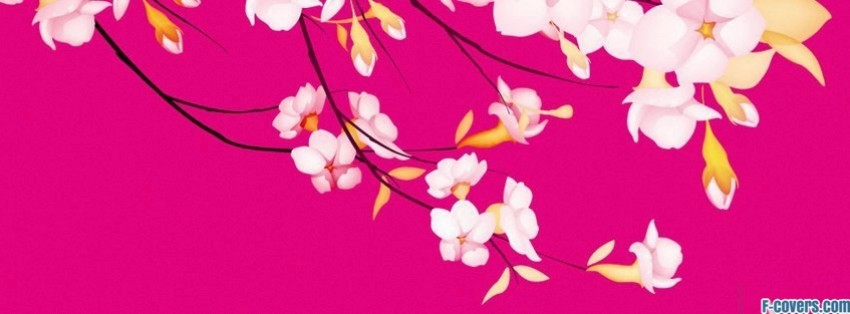 white flowers pink background facebook cover