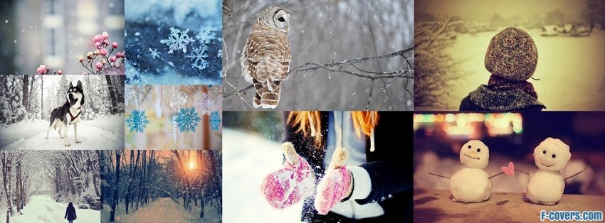 Car Cover For Snow >> collage Facebook Covers