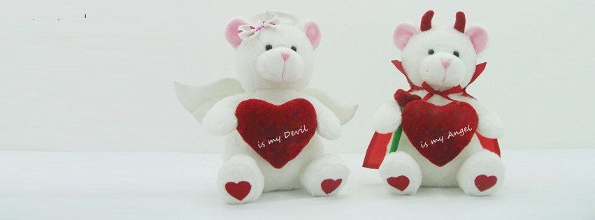 love-teddy-couple name cover
